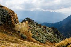 Sentier piéton de forêt sous le soleil en Himalaya dans l'Inde Photo stock