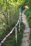 Sentier piéton de montagne avec la balustrade en bois Photos stock