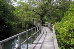 Sentier piéton en bois Photographie stock libre de droits