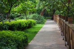 Sentier piéton en bois dans tout le jardin Photo libre de droits