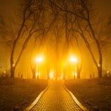 Sentier piéton en parc fabuleux de ville d'automne Images stock