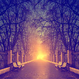 Sentier piéton en parc fabuleux de ville d'automne Photo stock