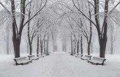Sentier piéton en parc fabuleux de ville d'automne Photographie stock