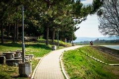 Sentier piéton en parc par le lac avec des arbres et bancs en premier ressort photos libres de droits