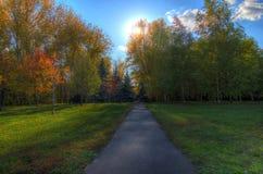 Sentier piéton en parc pittoresque d'automne d'automne Photos libres de droits