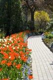 Sentier piéton et fleurs Photos stock