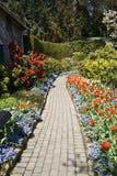 Sentier piéton et fleurs Images stock