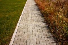 Sentier piéton et herbe Photo libre de droits