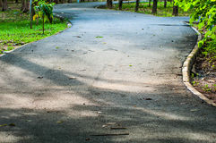 Sentier piéton et nature d'arbre dans le jardin Photos stock