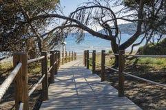 Sentier piéton et plage Photographie stock libre de droits