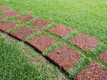 Sentier piéton fait à partir de la pierre sur l'herbe verte Photographie stock