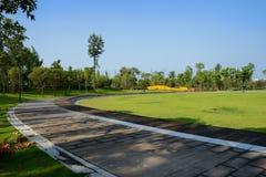 Sentier piéton louche autour de terrain de jeu circulaire herbeux en été ensoleillé photos libres de droits