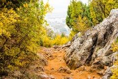 Sentier piéton parmi des couleurs d'automne Photographie stock libre de droits