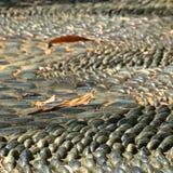 Sentier piéton sensoriel de grandes pierres de caillou photographie stock