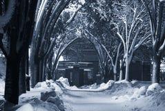 Sentier piéton Snow-covered Photos libres de droits