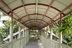 Sentier piéton vert de passage supérieur pour le piéton dans la route Image stock