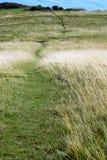 Sentier piéton de Litte Image libre de droits