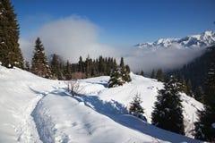 Sentier piéton en montagnes de l'hiver Photographie stock libre de droits