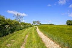 Sentier piéton herbeux de hautes plaines de Yorkshire Photos libres de droits