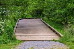 Sentiero costiero accessibile del terreno boscoso di handicap fotografia stock
