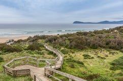 Sentiero costiero alla spiaggia all'allerta del collo, Tasmania Fotografia Stock Libera da Diritti