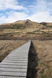 Sentiero costiero attraverso swampland Immagini Stock Libere da Diritti