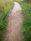 Sentiero costiero attraverso zona umida Fotografia Stock Libera da Diritti