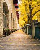 Sentiero costiero della città in autunno immagine stock libera da diritti