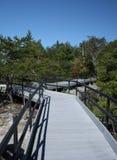 Sentiero costiero della natura Fotografia Stock Libera da Diritti