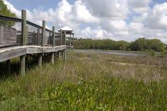 Sentiero costiero della natura a zona di osservazione Fotografia Stock Libera da Diritti