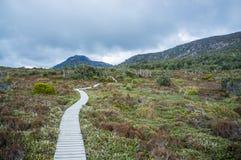 Sentiero costiero di bobina fra vegetazione indigena in montagne di Hartz nazionali fotografia stock