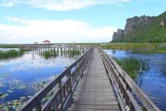 Sentiero costiero di legno Fotografia Stock