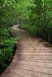 Sentiero costiero di legno Immagine Stock