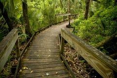 Sentiero costiero di legno. Immagine Stock Libera da Diritti
