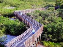 Sentiero costiero di legno   Fotografia Stock Libera da Diritti
