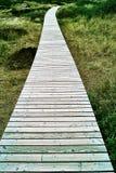 Sentiero costiero di legno attraverso le dune fotografia stock libera da diritti