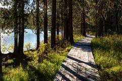 Sentiero costiero di legno lungo il lago nelle montagne Fotografie Stock Libere da Diritti