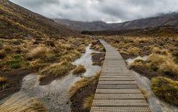 Sentiero costiero di legno nel parco nazionale di Tongariro immagine stock