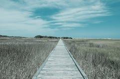 Sentiero costiero filtrato Fotografie Stock Libere da Diritti