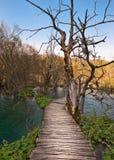 Sentiero costiero sopra il lago del turchese immagine stock libera da diritti
