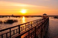 Sentiero costiero sul lago al tramonto immagine stock libera da diritti