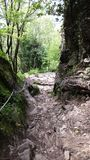 Sentiero di montagna Стоковое Изображение RF