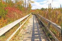 Sentiero didattico in autunno, upstate New York Fotografia Stock