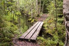 Sentiero didattico con il piccolo ponte del bordo che conduce sopra una fossa fotografia stock libera da diritti