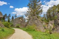 Sentiero didattico della valle di Wental Fotografie Stock Libere da Diritti