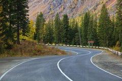 Sentiero forestale Immagini Stock Libere da Diritti