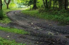 Sentiero forestale al Mak del KOH Fotografie Stock Libere da Diritti