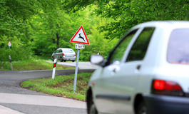 Sentiero forestale con il roadsign di cautela dei cervi Fotografie Stock Libere da Diritti