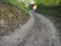 Sentiero forestale e tunnel Immagini Stock