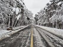 Sentiero forestale innevato in montagne Fotografia Stock Libera da Diritti